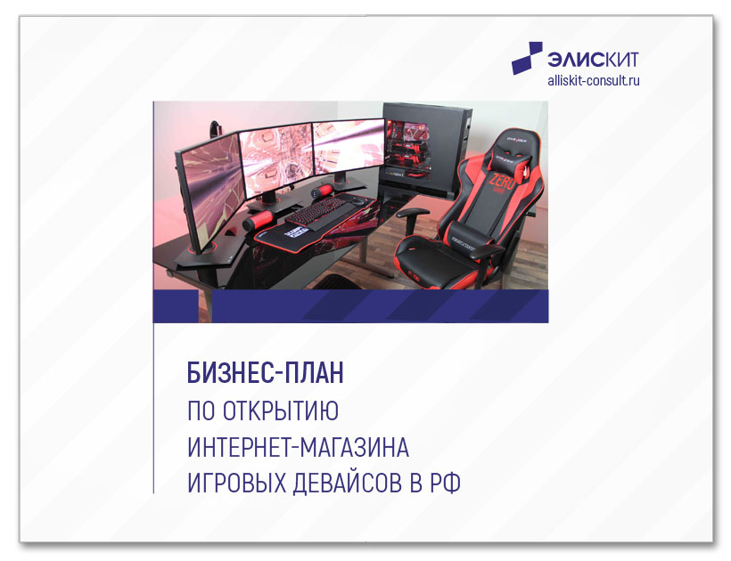Бизнес-план по открытию интернет-магазина игровых девайсов